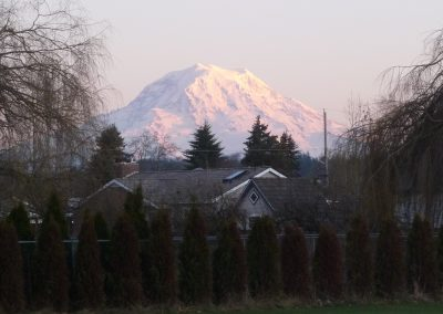 Mt Rainier View Puyallup Land for sale